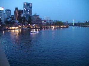 大阪造幣局桜の通り抜け 夜桜見物